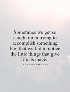 sometimes-we-get-so-caught-up-in-trying-to-accomplish-something-big-that-we-fail-to-notice-the-little-things-that-give-life-its-magic-quote-1
